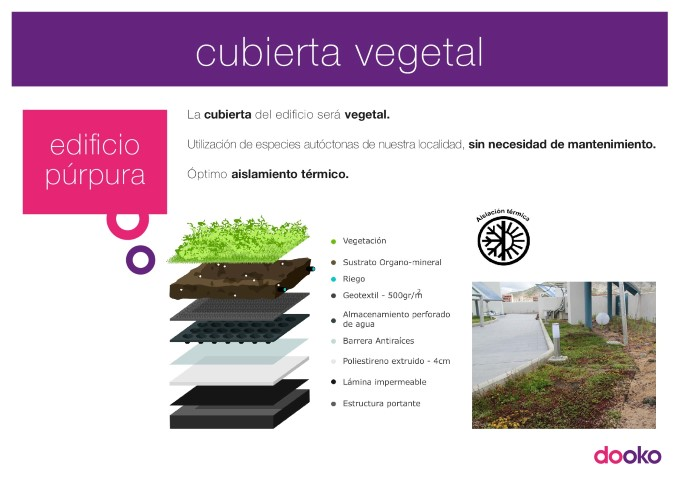 13_cubierta_vegetal-001