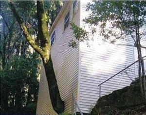 Curiosidades Arquitectónicas-3-dooko-Vivienda nueva en Villena-personalización-Tu Hogar Singular