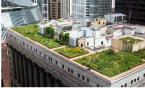 cubierta vegetal-4-dooko-edificio purpura-vivienda nueva en villena