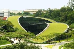 cubierta vegetal-1-dooko-edificio purpura-vivienda nueva en villena